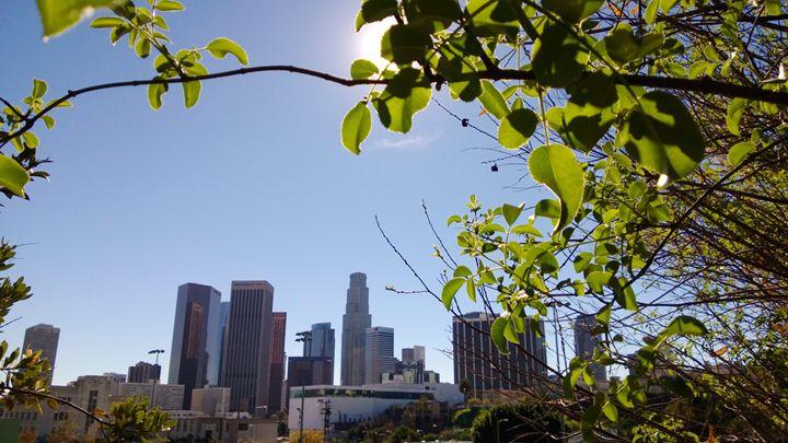 Los Angeles Sunrise - Nonconformist101