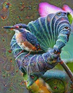 Deep Dream Kingfisher
