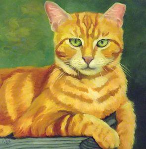 Portrait of Lucky Feral Blaze