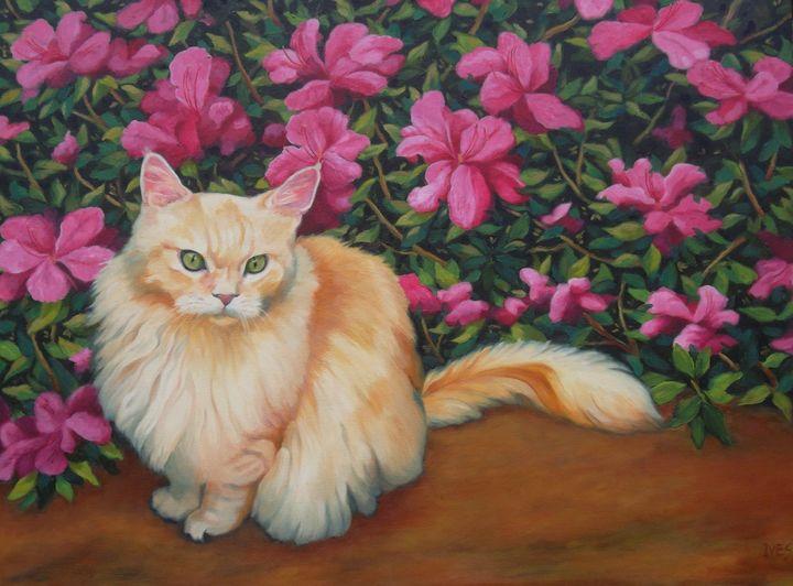 Pet Portrait Example - RKIves