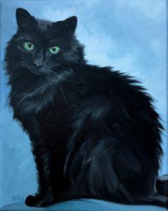 Pet Portrait Example Black Cat