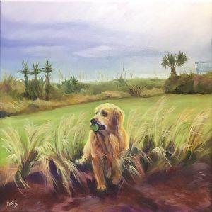 Pet Portrait Example: Buccaneer