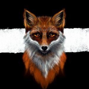 Amber Fauna | Fox