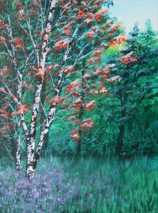 Lone Birch in the Forest - Judy Horan