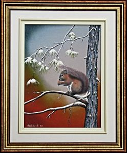 Red Squirrel in Red Pine