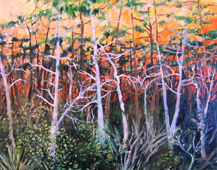 Those Pine Trees - Clare Radigan