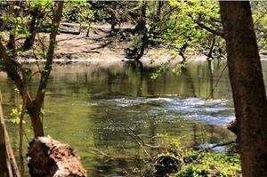 Natures flow