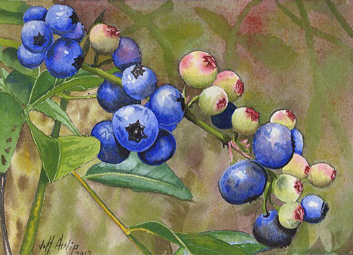 Backyard Blueberries - Jeff Atnip Art