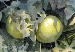Green Tomatoes - Jeff Atnip Art