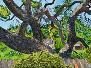Live Oak Backyard - Jeff Atnip Art