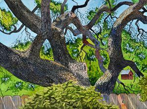 Live Oak Backyard - Jeff Atnip Art