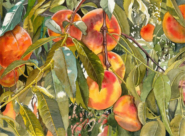Orchard Gold - Jeff Atnip Art