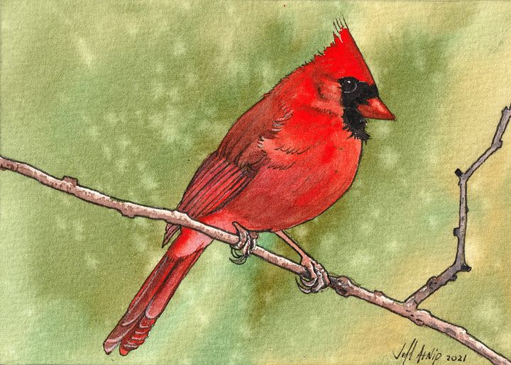 Some Kind Of Red Bird - Jeff Atnip Art