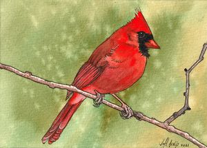 Some Kind Of Red Bird - Jeff Atnip Art