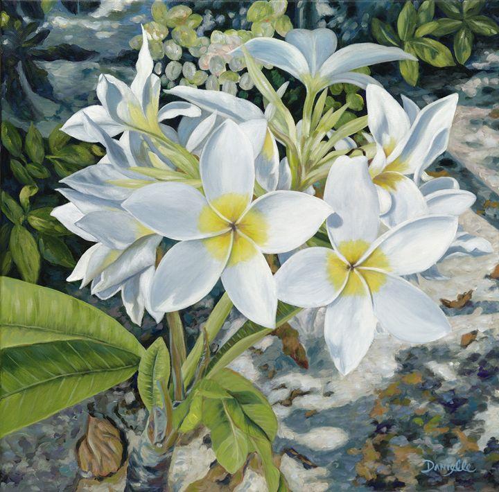 Frangipani - Danielle Perry Fine Art