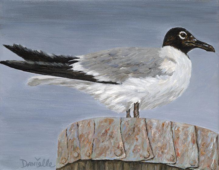 Bimini Gull - Danielle Perry Fine Art