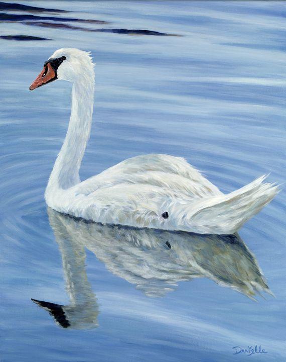 Solitary Swan - Danielle Perry Fine Art