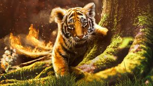 Baby Tigers Downfall