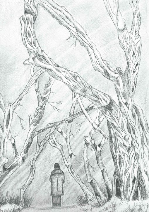A trudge through the old Forest - FarraSpace