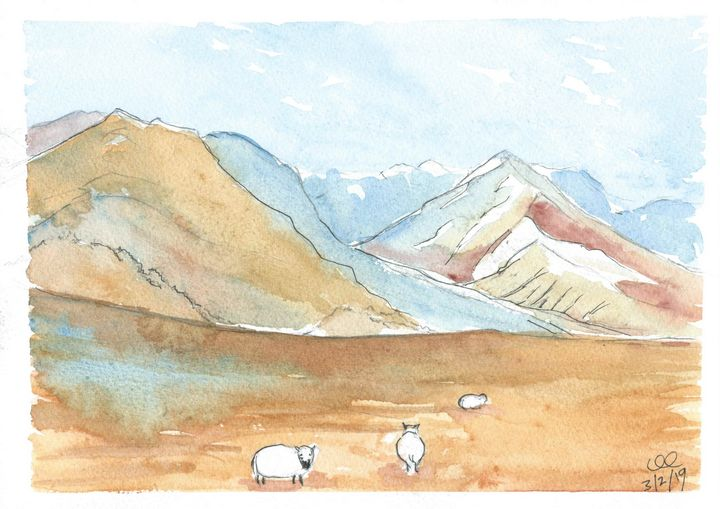 New Zealand Lambs in the mountains - FarraSpace