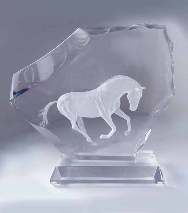 WILD HORSE - ACRYLICARTE