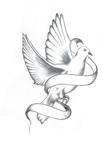 Dove With Banner