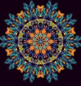 Kosmic Flying Carpet - Kosmic Kreation