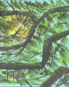 Sunshine through the tree