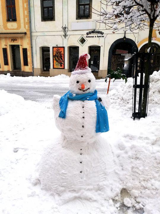 Snowman - Jana ART