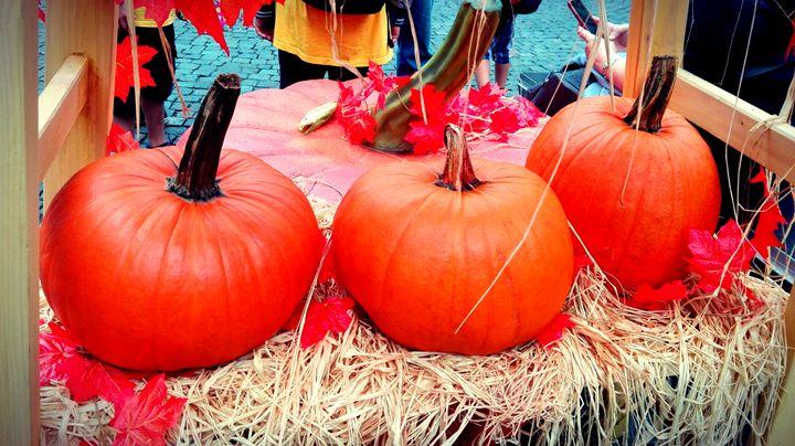 pumpkin - Jana ART