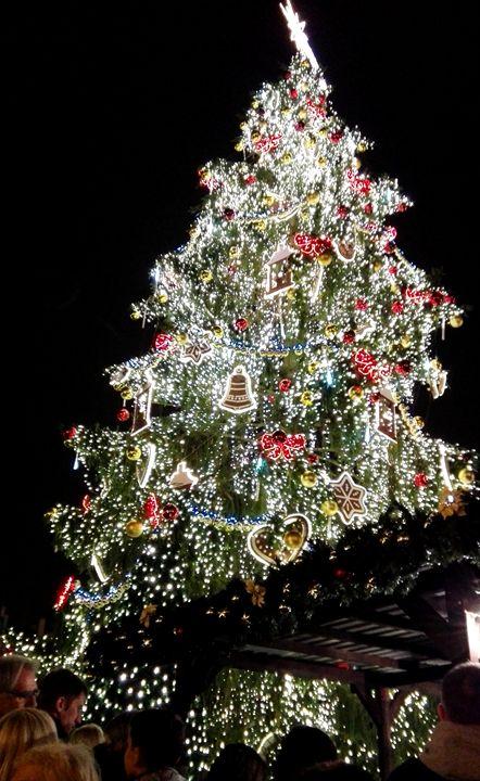 Christmast tree, Prague - Jana ART