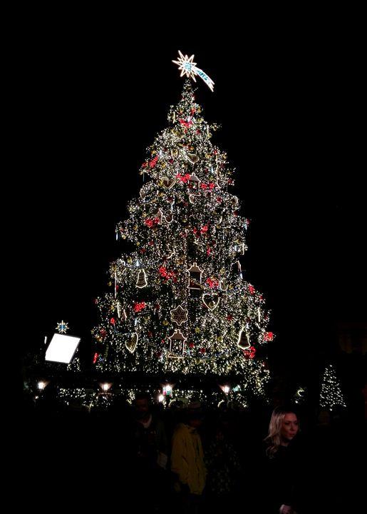 Christmast tree, Prague 1 - Jana ART