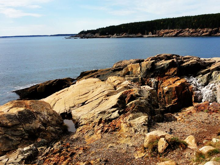 Acadia Coast - Real Art Studios, LLC