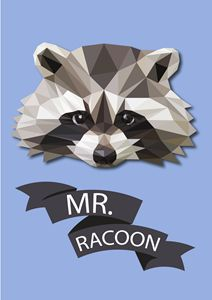 Mr.Racoon