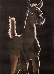 Arab Foal