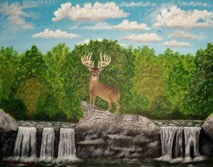 A Buck Overlooking a River