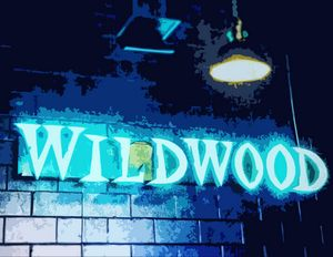 Wildwood in Neon - Wildwood Boardwalk Art