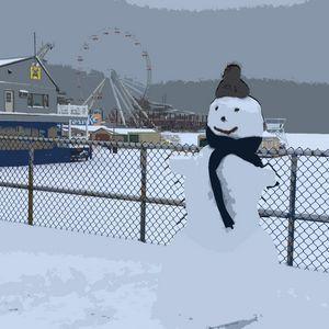 Wildwood Snow Man