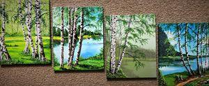 Collezione Betulla - (Birch Collecti