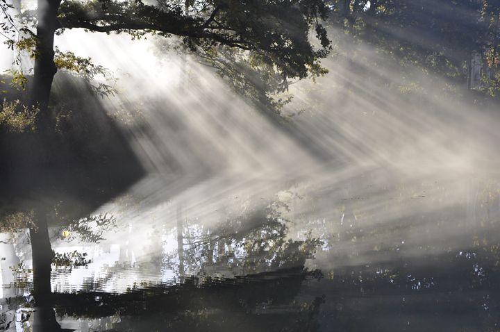 Smoke effects, 4. - Leigh Rowland