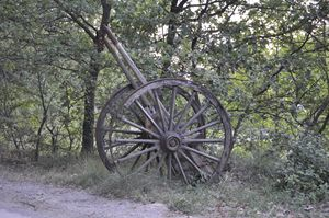Well preserved old cart