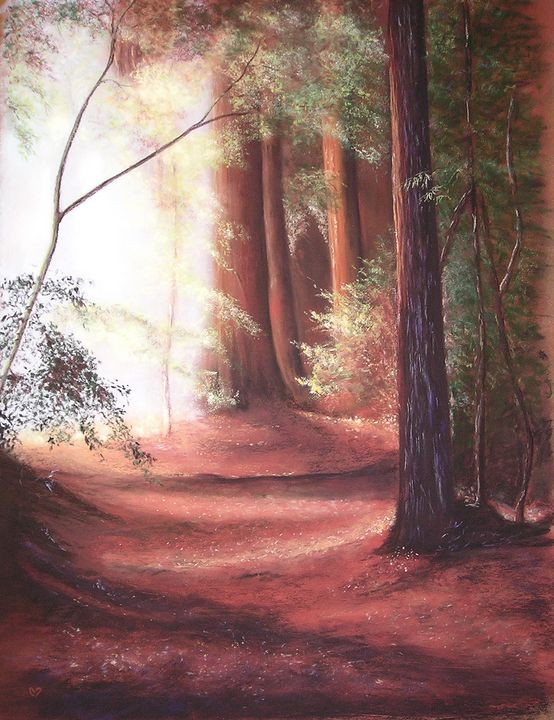 Forêt rouge - Briss