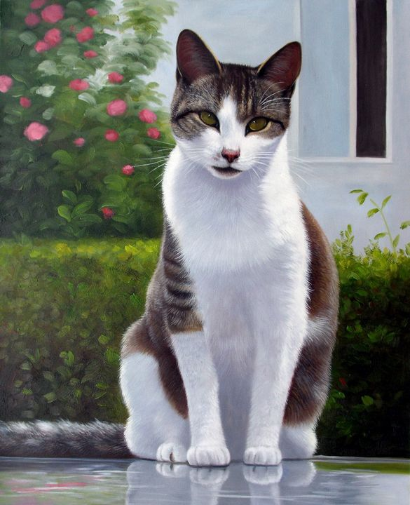 Pet portrait - cat sample 007 - Richard Zheng