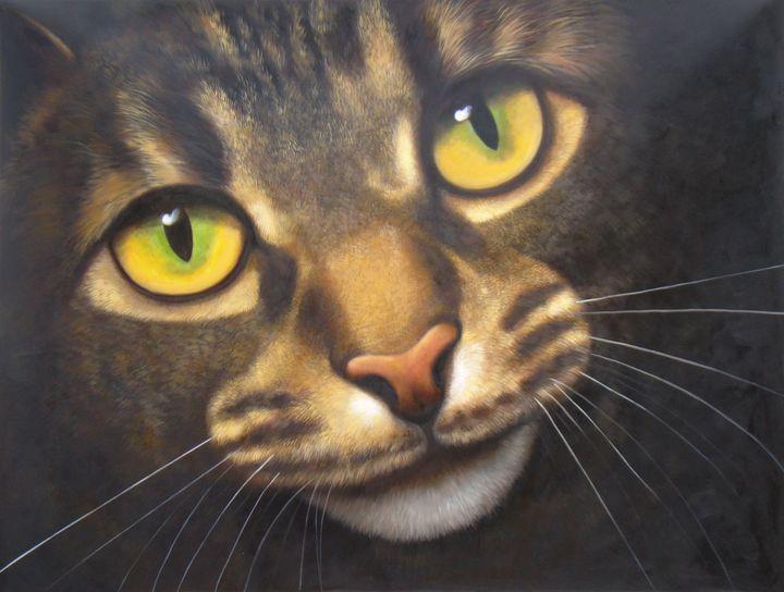 Pet portrait - cat sample 009 - Richard Zheng