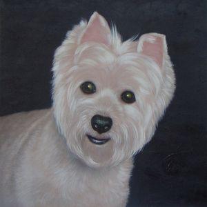 Pet portrait - dog #024