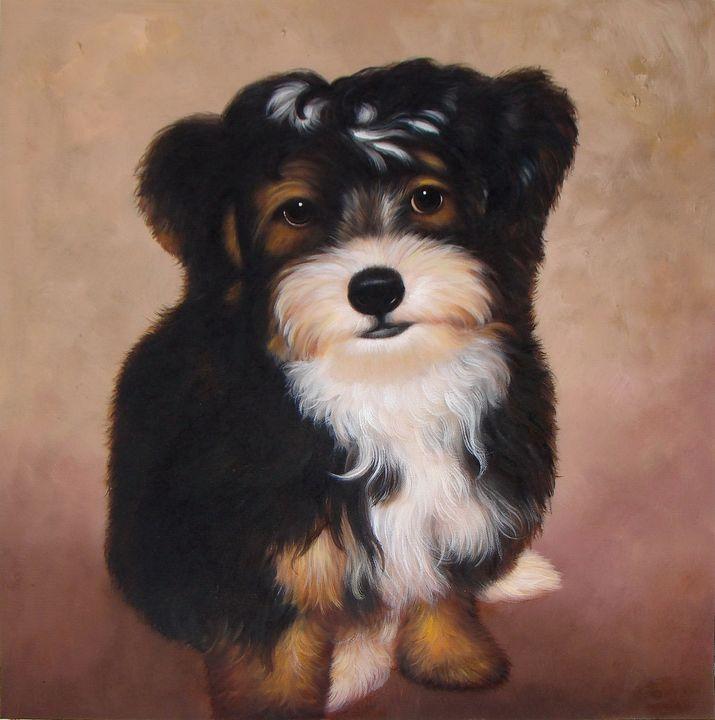 Pet portrait - dog #025 - Richard Zheng