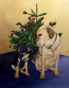 Pet portrait - dog #026