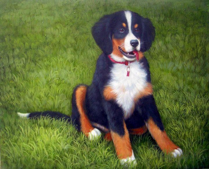 Pet portrait - dog #030 - Richard Zheng