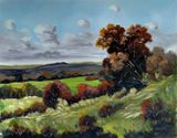 Landscape - Country