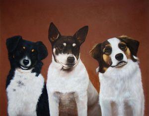 Pet portrait - dog #032